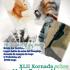 XLII Jornada sobre malos tratos y abusos a personas mayores el 28 de mayo